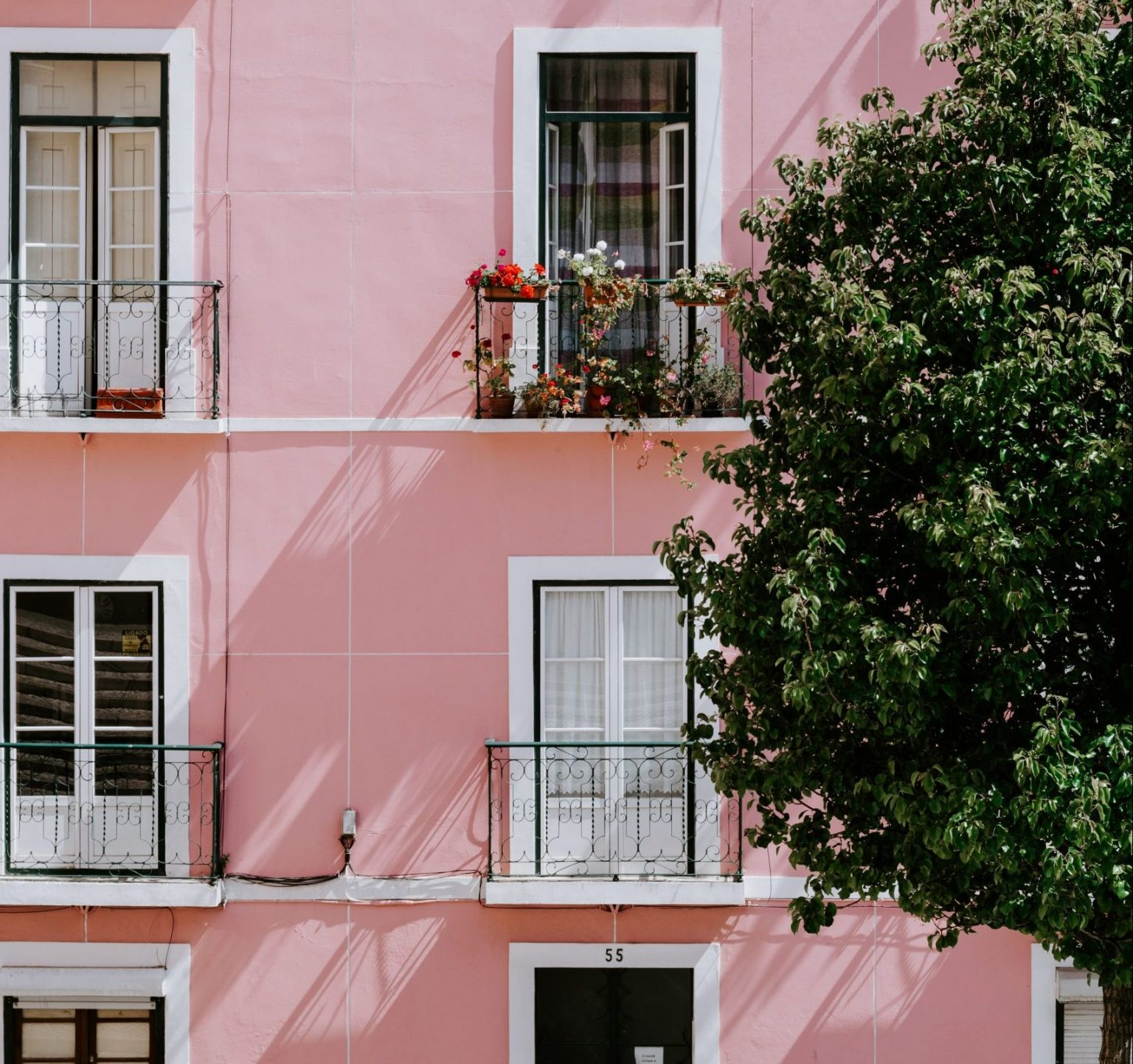 pink house popis